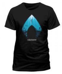 Pánské tričko Aquaman – Logo